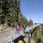Nichts für schwache Nerven: Die Wildline Hängebrücke im Nordschwarzwald.