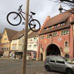 Bis zum Aschermittwoch bestückte ein Fahrrad einer Löffinger Hexe den Narrenbaum.
